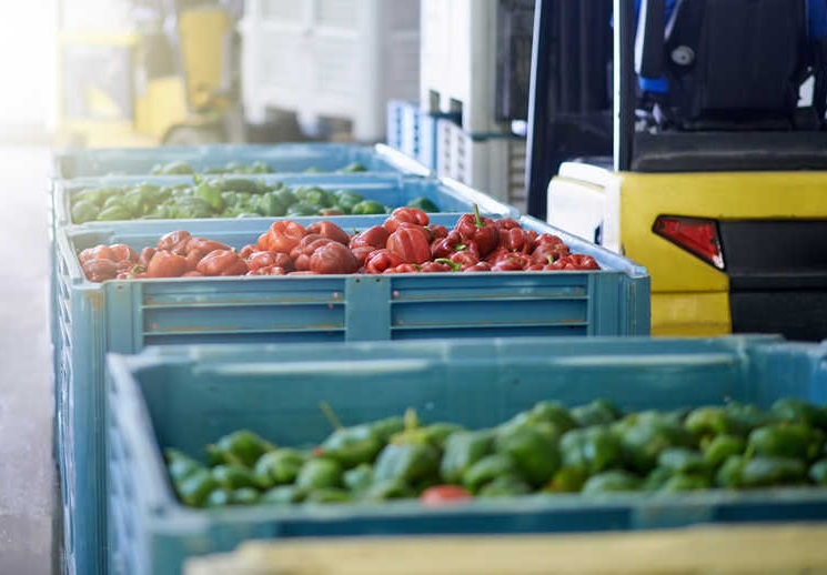 AgShift launches Hydra F100 BQ to redefine quality transparency in the food supply chain