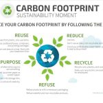 Join the green revolution: five ways to keep your company & supply chain partners sustainable
